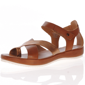 Ara - 15181 Leather Gladiator Sandal, Whiskey